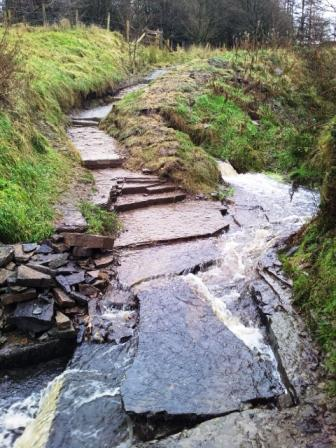 Duckworth Clough 1